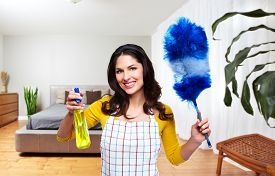 pic of maids  - Maid woman with tools - JPG