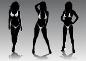 picture of hooker  - Vector drawing slim and beautiful girls in bikini - JPG