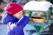 Adorable Little Girl Feeding Birds On Chilly Winter Day In City Park. Child Helping Birds At Winter. poster