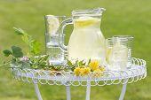 lemonade in the garden