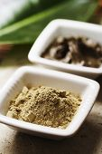 algae powder and natural mud for skin care
