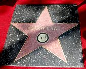LOS ANGELES - MAY 19:  Chaka Kahn's Walk of Fame Star at the Chaka Kahn Hollywood Walk of Fame Star