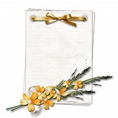 Vintage Paper With A Flowers On White Isolated Background.