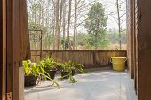 Terrace Of Interior Design Room With Forest View. Interior Design Room Include Plants And Tree And B poster