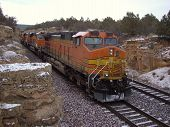 Freight train passing through sandstone cut