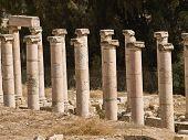 stock photo of cardo  - Main street cardo in Roman city - JPG