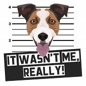 Illustration Mugshot Jack Russell Terrier - The Guilty Dog ​​gets A Police Photo. Dog Lovers And Dog poster