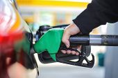 Close Up Hand Holding Green Gasoline Fuel Nozzle And Being Fill Gas Tank Of Black Car In Gas Station poster