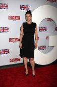 LOS ANGELES - FEB 24:  Julia Ormond arrives at the GREAT British Film Reception at the British Consul General�?�¢??s Residence on February 24, 2012 in Los Angeles, CA.