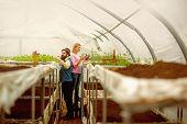Soil Fertilizer. Soil Fertilizer Production. Natural Soil Fertilizer In Greenhouse. Soil Fertilizer  poster