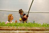 Father Mother And Son In Greenhouse. Son With Mother And Father Work In Greenhouse. Mother Father An poster