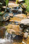 Waterfall Water Stream
