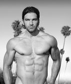 Black and white portrait of a hunky muscular shirtless male model outdoors with palm trees