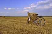 bicycle and mown field of wheat