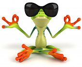 stock photo of rainforest  - Fun frog - JPG