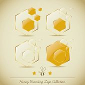Honey Branding Logo Collection