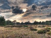 Hdr Image Of Open Heathland