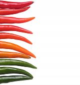 Colorful Chillies Border Isolated On White Background. These Chilies Are In Red(crimson), Orange And