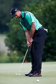 NORTON, MA-SEP 1: Tiger Woods putts the green during the third round at the Deutsche Bank Championship at TPC Boston on September 1, 2013 in Norton, Massachusetts.