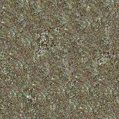 Seamless Texture of Steppe Soil.