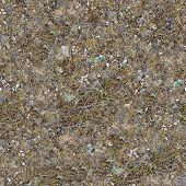 Seamless Texture of Rocky Steppe Soil.