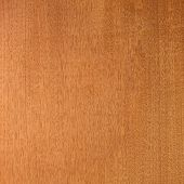 Honduras mahogany (big-leaf mahogany (Swietenia macrophylla),) wood texture. Sought after wood for g