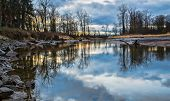 Bare Trees Reflected In River