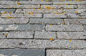 Cornish slate roof tiles