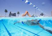 Young male athlete swimming in pool