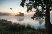 Beautiful Autumnal Landscape Image Of Birds Flying Over Misty Lake At Sunrise