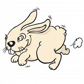 rabbit run cartoon
