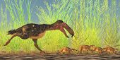 image of giant lizard  - Kelenken was a giant flightless carnivorous  - JPG