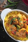 Indian chicken jalfrezi curry