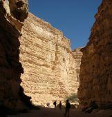canyon Barak in Negev desert
