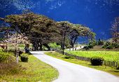 The road in Vinales Valley Cuba