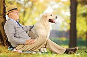 stock photo of vegetation  - Senior gentleman and his dog sitting on ground in a park - JPG