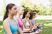 Female friends meditating in lotus position at the park
