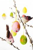 stock photo of pussy-willows  - Easter colored eggs and birds on  pussy willow branches - JPG