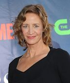 LOS ANGELES - JUL 17:  Janet McTeer arrives to the CBS-CW-Showtime Summer TCA Press Tour 2014  on Ju