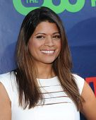 LOS ANGELES - JUL 17:  Andrea Navedo arrives to the CBS-CW-Showtime Summer TCA Press Tour 2014  on J