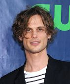 LOS ANGELES - JUL 17:  Matthew Gray Gubler arrives to the CBS-CW-Showtime Summer TCA Press Tour 2014