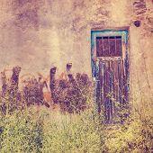 Old door for background