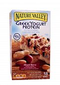 Greek Yogurt Bars