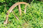 Feed Wheel, Colliery In The Forest Floor