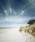 Sand, water and sky beach scenery