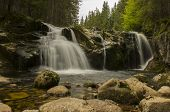 Small Elbe's Waterfall In Krkonose Mountains (czech Republic)