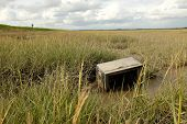 stock photo of marsh grass  - An old television set lays on mud among grass on a marsh with the figure of a man on a grass bank in the distance - JPG