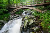 Wooden Bridge over Blue Ridge Mountain Stream