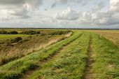 stock photo of marshlands  - Lush green grass and a track on a dyke running through marshland with a blue cloudy sky in the distance - JPG