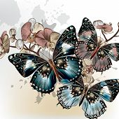 Fashion Vector Background With Butterflies